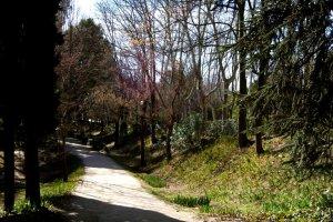 Quinta de los Molinos 1