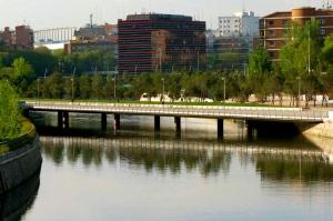 Puente Oblicuo 1